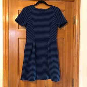 Madewell Gallerist Blue Striped Ponte Dress Sz 6